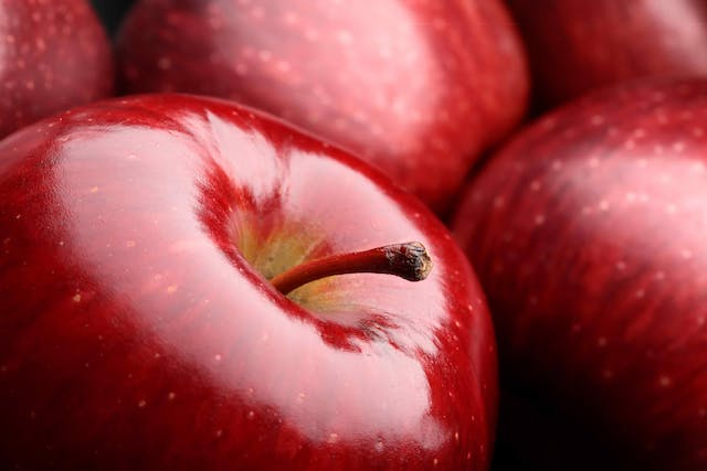 Apple Poisoning in Cats - Symptoms, Causes, Diagnosis, Treatment, Recovery, Management, Cost