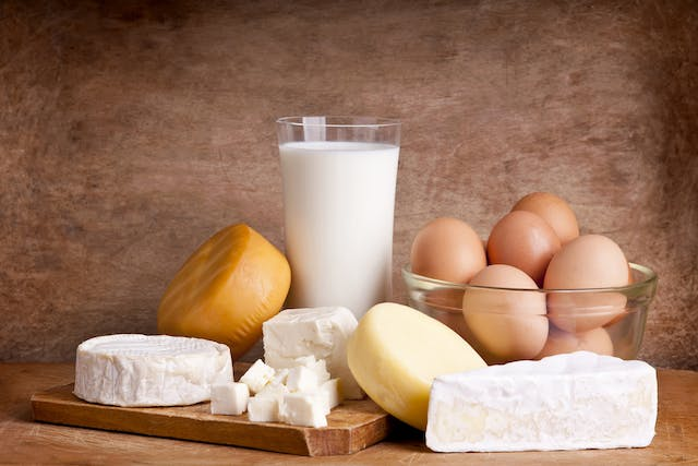 Dairy Allergy in Cats - Symptoms, Causes, Diagnosis, Treatment, Recovery, Management, Cost