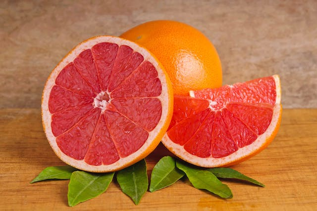 Grapefruit Poisoning in Cats - Symptoms, Causes, Diagnosis, Treatment, Recovery, Management, Cost