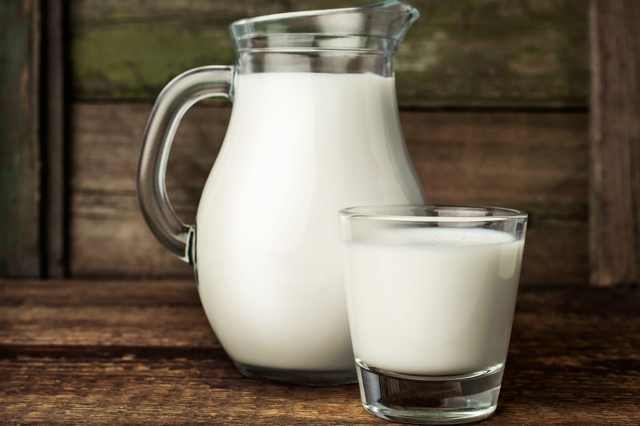 Milk Allergy in Cats