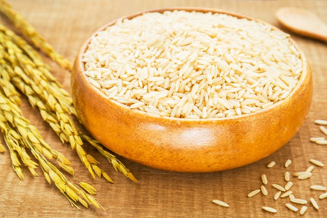 Rice Allergy in Cats - Symptoms, Causes, Diagnosis, Treatment, Recovery, Management, Cost