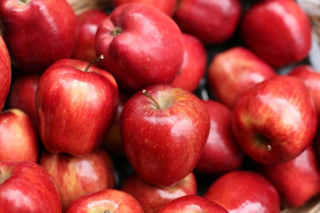 Apples Allergies in Dogs - Symptoms, Causes, Diagnosis, Treatment, Recovery, Management, Cost