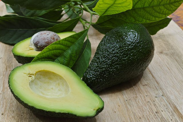 Avocado Poisoning in Dogs - Symptoms, Causes, Diagnosis, Treatment, Recovery, Management, Cost