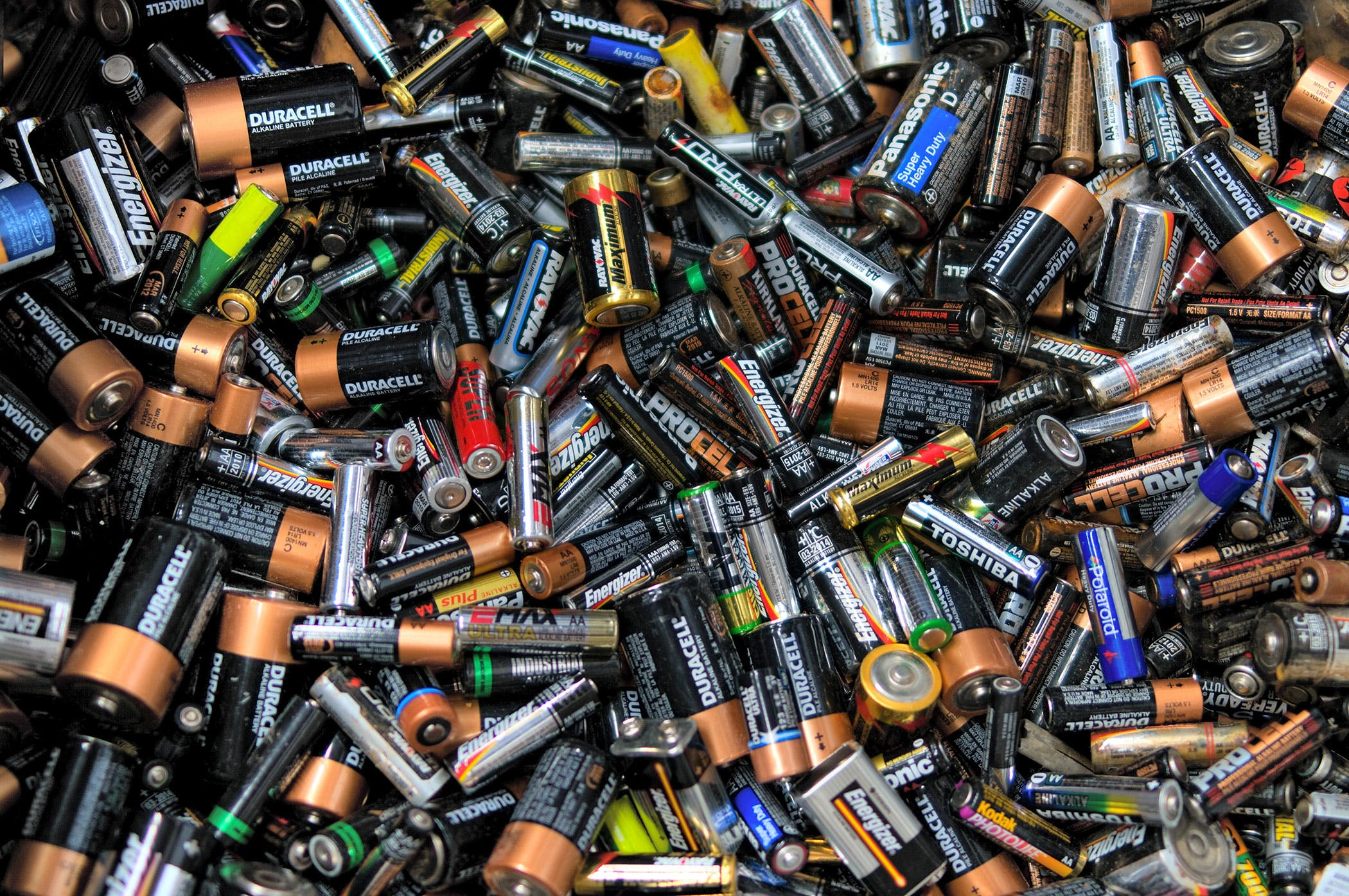 Battery Poisoning in Dogs - Symptoms, Causes, Diagnosis, Treatment