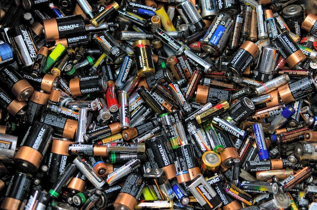 Battery Poisoning in Dogs - Symptoms, Causes, Diagnosis, Treatment, Recovery, Management, Cost