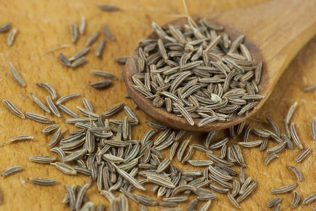 Caraway Poisoning in Dogs - Symptoms, Causes, Diagnosis, Treatment, Recovery, Management, Cost
