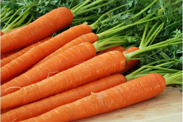 Carrots Allergies in Dogs - Symptoms, Causes, Diagnosis, Treatment, Recovery, Management, Cost