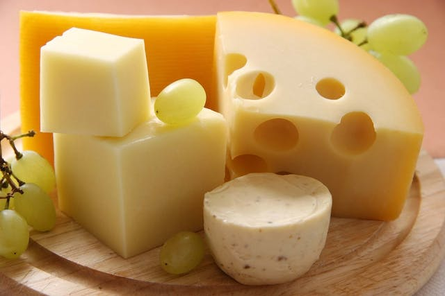 Cheese Allergies in Dogs - Symptoms, Causes, Diagnosis, Treatment, Recovery, Management, Cost