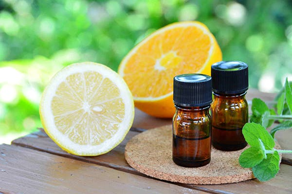 Citrus Oil Toxicity in Dogs - Symptoms, Causes, Diagnosis, Treatment, Recovery, Management, Cost
