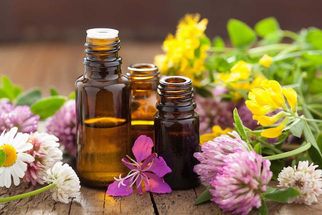 DoTERRA Allergies in Dogs - Symptoms, Causes, Diagnosis, Treatment, Recovery, Management, Cost