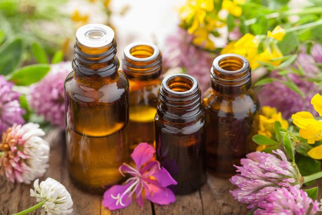 Essential Oils for Allergies in Dogs - Symptoms, Causes, Diagnosis, Treatment, Recovery, Management, Cost