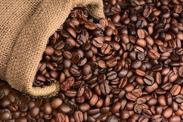 Java Beans Poisoning in Dogs - Symptoms, Causes, Diagnosis, Treatment, Recovery, Management, Cost