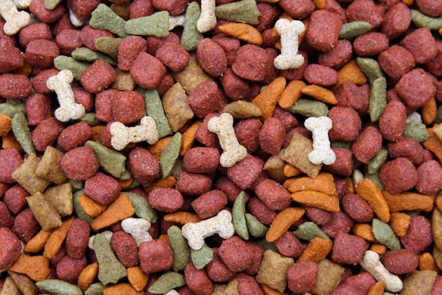 Kirkland Food Allergies in Dogs - Symptoms, Causes, Diagnosis, Treatment, Recovery, Management, Cost