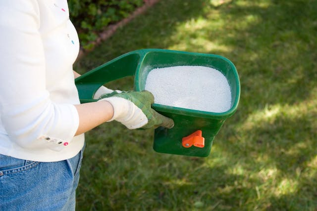 Lawn Fertilizer Allergies in Dogs - Symptoms, Causes, Diagnosis, Treatment, Recovery, Management, Cost