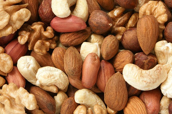 Nut Allergies in Dogs - Symptoms, Causes, Diagnosis, Treatment, Recovery, Management, Cost