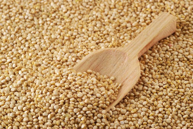 Quinoa Allergies in Dogs - Symptoms, Causes, Diagnosis, Treatment, Recovery, Management, Cost