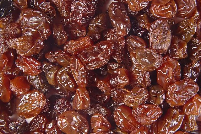 Raisin Poisoning in Dogs - Symptoms, Causes, Diagnosis, Treatment, Recovery, Management, Cost