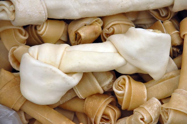 Rawhide Allergies in Dogs - Symptoms, Causes, Diagnosis, Treatment, Recovery, Management, Cost