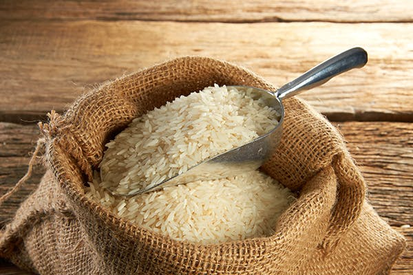 Rice Allergies in Dogs - Symptoms, Causes, Diagnosis, Treatment, Recovery, Management, Cost