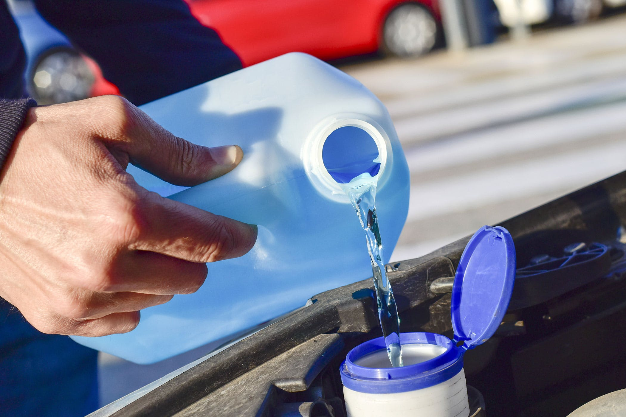 Windshield Wiper Fluid Poisoning In Dogs Symptoms Causes