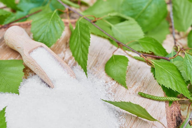 Xylitol Poisoning in Dogs - Symptoms, Causes, Diagnosis, Treatment, Recovery, Management, Cost