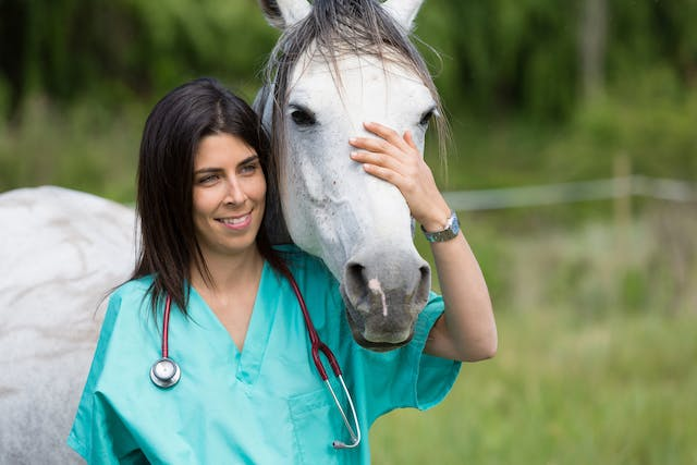 Atresia Ani in Horses - Symptoms, Causes, Diagnosis, Treatment, Recovery, Management, Cost
