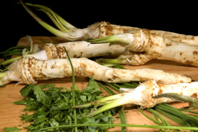 Horseradish Poisoning in Horses - Symptoms, Causes, Diagnosis, Treatment, Recovery, Management, Cost
