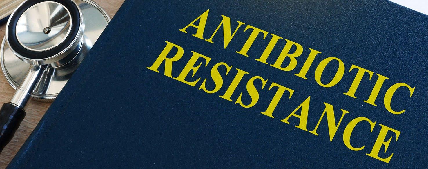 wellness-antibiotic-resistant-bugs-pets-and-pet-owners-hero-image