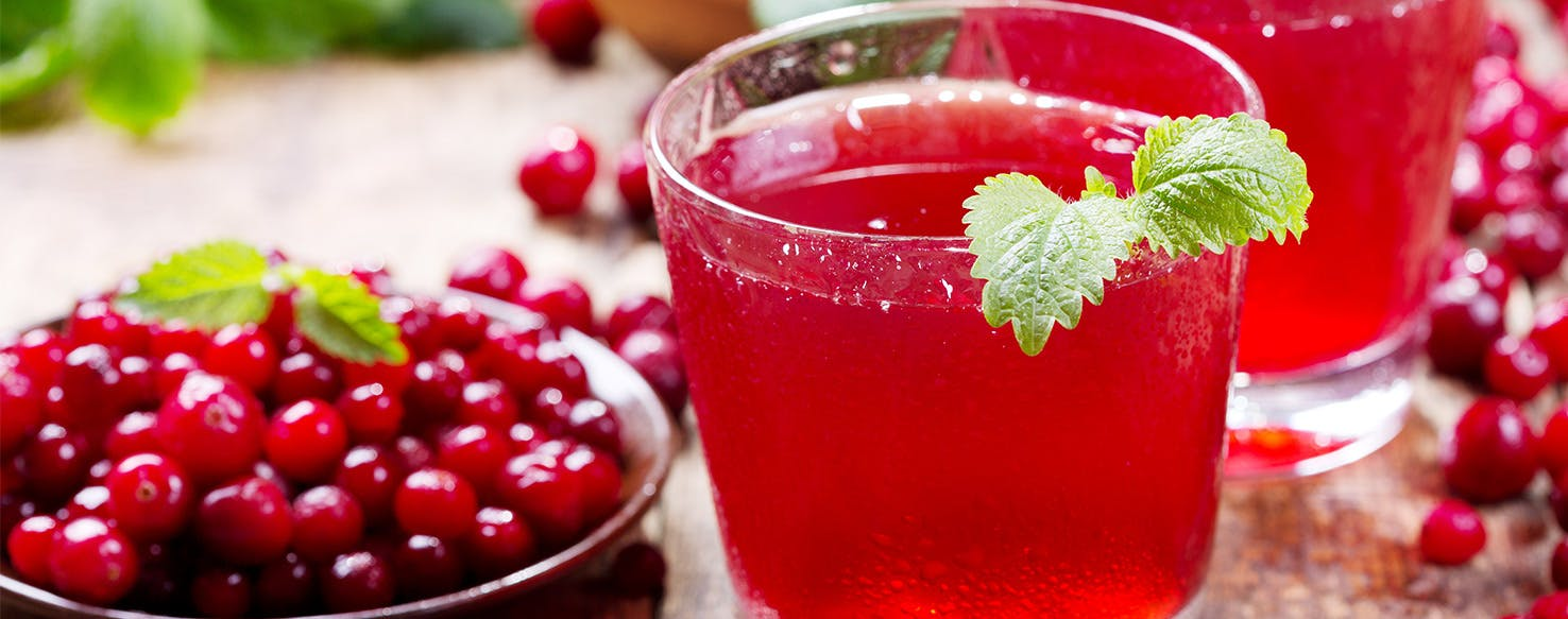 Cranberry Juice For My Dog's Urinary Tract Infection?