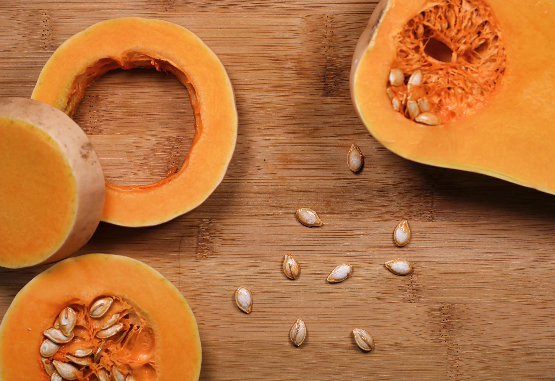 wellness-does-pumpkin-help-constipation-in-dogs-hero-image