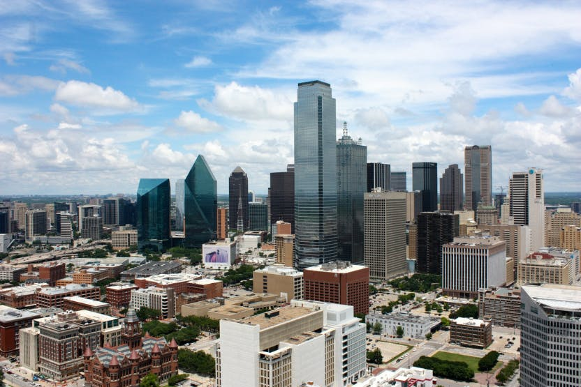 wellness-how-expensive-is-it-to-own-a-dog-in-dallas-hero-image