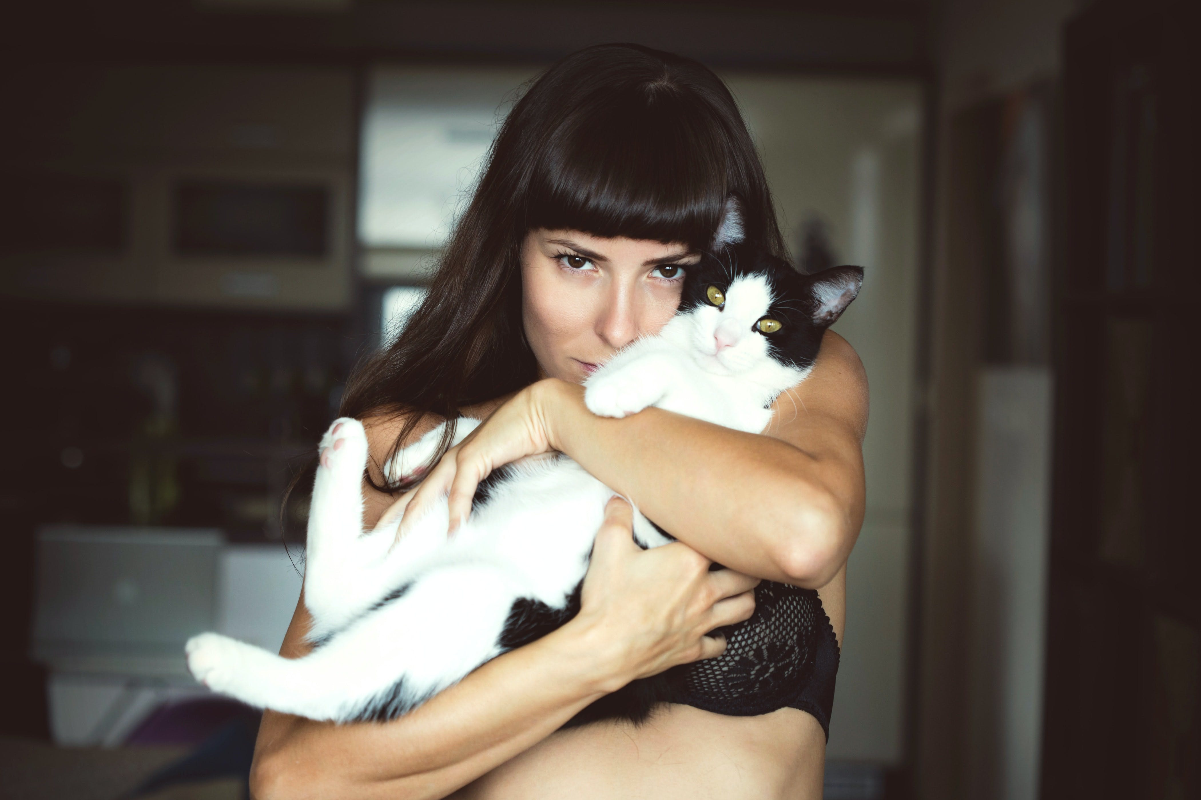 daily-wag-top-5-things-you-can-start-doing-today-to-reduce-your-pets-allergies-hero-image