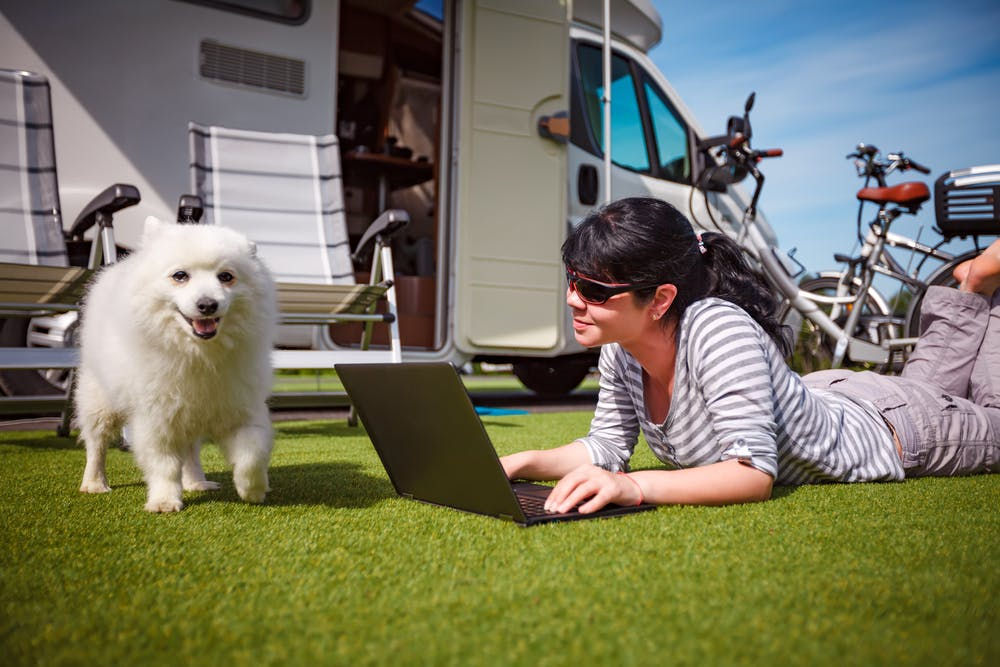 daily-wag-top-5-houston-campgrounds-to-visit-with-your-pup-this-summer-hero-image