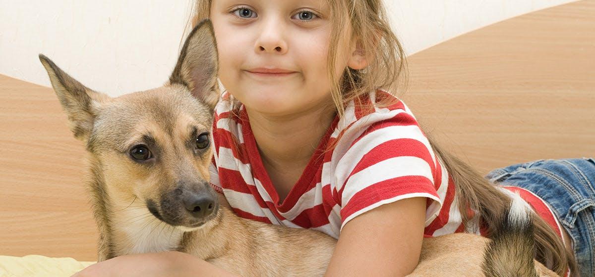 Can Dogs Taste Almond Milk? - Wag!